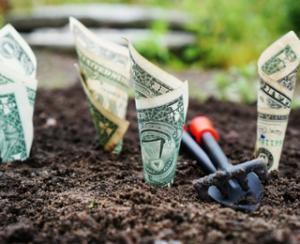 Create Financial Wellness