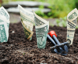 How to Create Financial Wellness